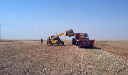 Agritech Dieci Nilo Sudan