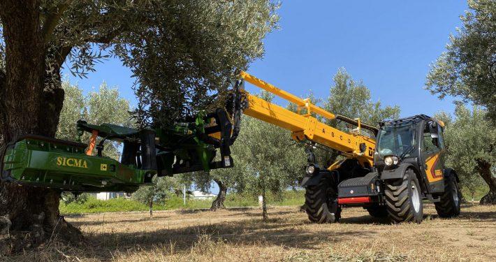 Sollevatore telescopico olivicoltura